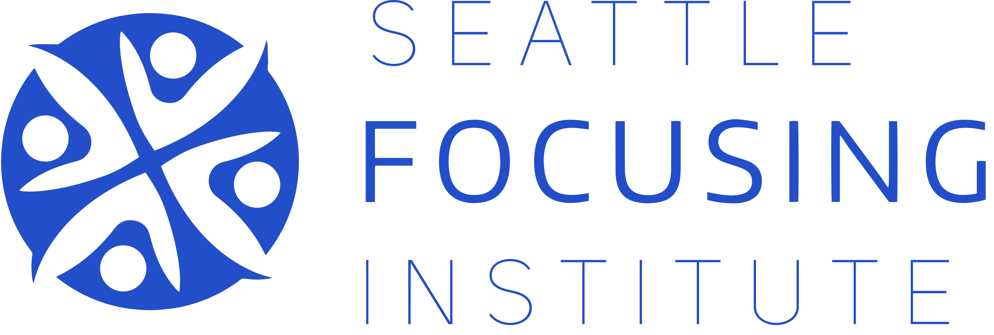 Seattle Focusing Institute